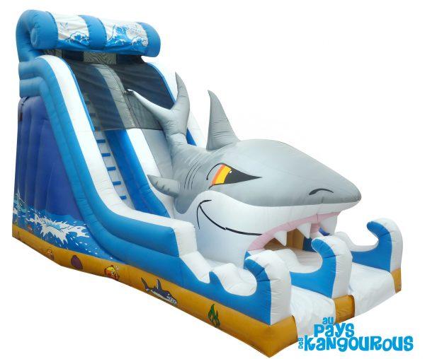 Toboggan Requin
